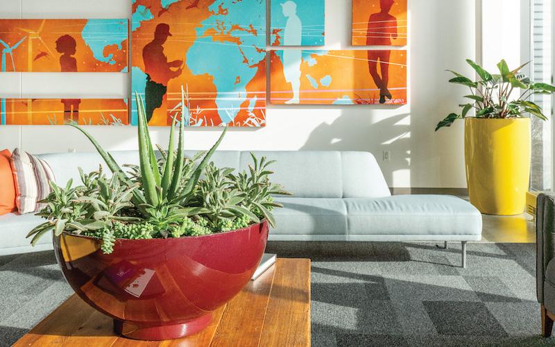 Indoor planters in office