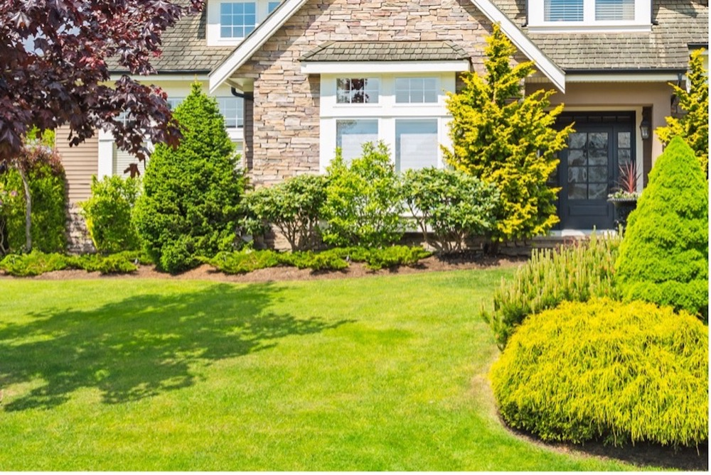 Landscaping in front of brick home