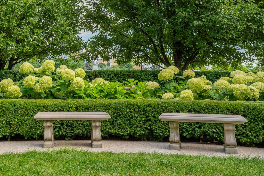 Image of two stone benches in front of a hedge and lush bushes